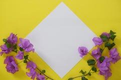 Prototype Witboek met ruimte voor tekst of beeld op gele achtergrond en bloemen stock foto