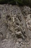 The protruding rock on the mountainside. Ukraine royalty free stock photography