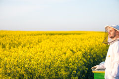 Proud apiarist. On the rapeseed field, near his hives, looking into the Sun. Selective focus, Copy space Stock Image