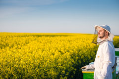 Proud apiarist. Young proud apiarist holding a smoker on a rapeseed field and looking into the sun. Selective focus, narrow depth of field, copy space Royalty Free Stock Photo