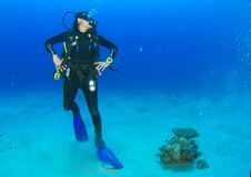 Proud diver - girl underwater royalty free stock images