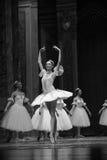 A proud figure-Tableau 3-The Ballet  Nutcracker Royalty Free Stock Photos