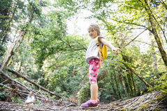 Proud little girl scout standing on a log in the woods royalty free stock photos
