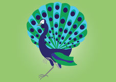 Proud peacock royalty free illustration