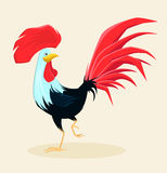 Proud red rooster with beautiful lush tail and crest. Symbol of New Year 2017. Cute cartoon cock. Vector illustration Royalty Free Stock Photography