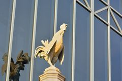 Proud rooster on a pedestal Stock Images