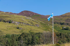 Proud Scottish flag flapping in the wind Royalty Free Stock Image