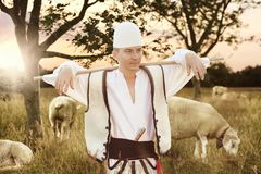 Proud shepherd in traditional Albanian costume tend sheeps in th. E evening sunlight stock photos