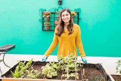 Proud Woman Standing At Urban Garden. Portrait of good looking woman smiling while standing at organic vegetable garden royalty free stock images