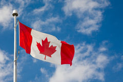 Proudly Canadian royalty free stock image