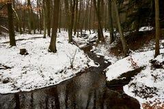 Proudu β zimnÃm lese Στοκ εικόνες με δικαίωμα ελεύθερης χρήσης