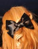 Proue noire sur le cheveu Images stock
