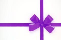 Proue violette d'isolement au-dessus du fond blanc photos stock