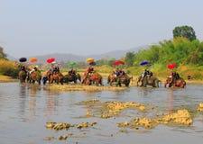 A província de Srisatchanalai, Tailândia-abril 7,2019, muitos povos comemora na cultura velha tailandesa imagens de stock royalty free