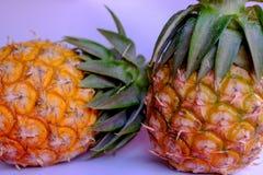 Prova del dolce di dimensione dell'ananas dell'Asia mini fotografia stock libera da diritti