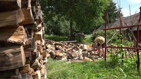 Prova dell'uomo per tagliare ceppo a pezzi di legno ma da venire a mancare 4K video d archivio