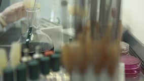 Prova di Medican in laboratorio archivi video