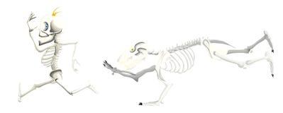 Prova di scheletro dell'orso per prendere uno scheletro dell'uomo fotografie stock libere da diritti