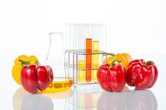 Prova di verdure, modifica genetica, pepe Fotografie Stock