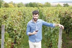 Provando o vinho Fotos de Stock Royalty Free