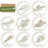 Provencal Herbs Stock Photos