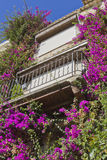Provencal House with beautiful flowers Stock Photos