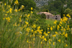 A Provencal house in yellow field Royalty Free Stock Images
