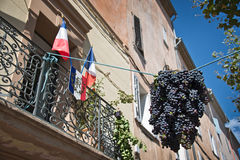 Provencal village during grape harvest Royalty Free Stock Image