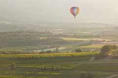 Provencal vineyards Stock Image