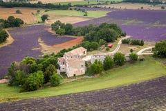 Provencallandbouwbedrijf dichtbij Sault, de Provence, Frankrijk Stock Foto