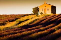 provence Royaltyfri Foto