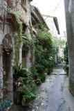 Provence Stockbilder