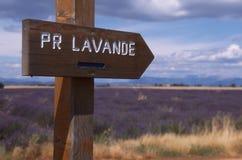 Provence - campo de la lavanda fotos de archivo