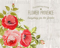Provence card background. Royalty Free Stock Images