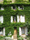 Provence facade overgrown. Vine overgrown facade front of a beautiful maison de haute guesthouse near aix en provence in the south of france royalty free stock photography