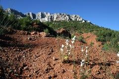 Provence-Farben Lizenzfreies Stockbild