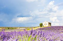 Provence, France. Chapel with lavender field in Plateau de Valensole, Provence, France Royalty Free Stock Images