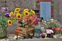 Free Provence, France Stock Photos - 42814853