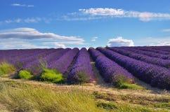 Provence, France Imagens de Stock Royalty Free