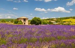 Provence. France. Royalty Free Stock Image