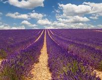 Provence frankreich Stockfoto