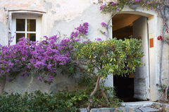 Provence house with flowers. Typcal facade of Provence house with blossom flowers Stock Photo
