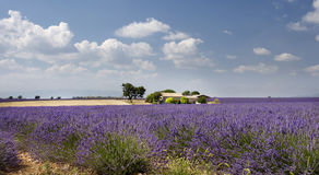 Provence landscape Stock Photo