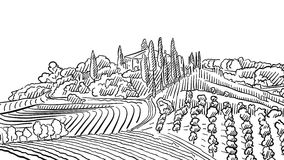 Provence Landscape Apple Plant and Vineyard. Vector Sketched Outline Artwork Stock Image