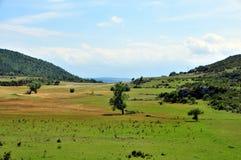 Provence-Landschaft Lizenzfreies Stockbild