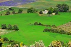 Provence lantligt landskap fotografering för bildbyråer