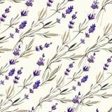 Provence lavendel decor4 Royaltyfria Foton