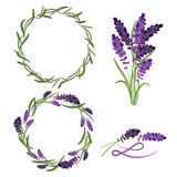Provence lavender flower bouquet set. Royalty Free Stock Photography