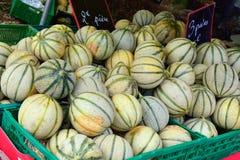 provence melon Arkivbilder