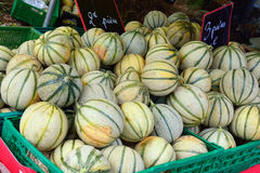 Provence. melon Stock Images